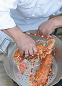 A chef with crayfish