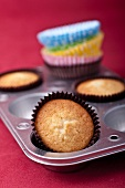 Vanilla cupcakes in a muffin tin