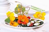 Nasturtium flower and blue cheese salad