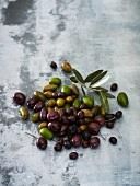 Grüne und schwarze Oliven mit Blättern