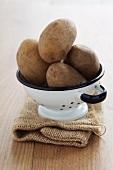 Ditta-Kartoffeln im Fussseiher