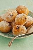 Fritole (Venetian lard cookies)