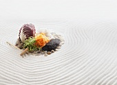 Radicchio, carrots, sprouts and seeds