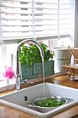 Spülbecken mit fliessendem Wasser vor dem Küchenfenster