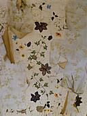 Vintage Wand mit abgeblätterter Farbe und Reste von verschiedenen Tapetenschichten mit floralem Muster
