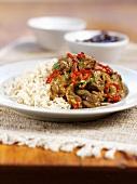 Lamb Kolhapuri (lamb curry, India) with rice