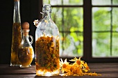 Arnica flowers in a bottle on a window sill