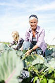 Women working in a cabbage field