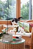 Sitzecke mit Rattansessel und Ablagetisch mit weisser Orchidee & Büchern