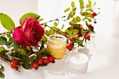 Rose hip cream