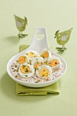Hard boiled eggs in horseradish mayonnaise with turnips, dill and bean sprouts