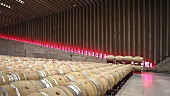Wine being store in the Faustino winery, Ribera del Duero, Spain