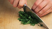 Coriander and parsley being chopped