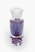 Dried lavender in a glass jar