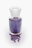 Getrocknete Lavendelblüten im Apothekerglas
