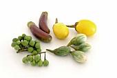 Variety of Types of Eggplants