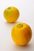 Two bergamot oranges