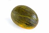A Futuro melon