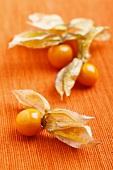 Physalis on an orange surface