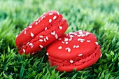 Two strawberry macaroons on the grass