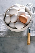 Bowl of White Eggs with One Brown Egg; Whisk