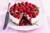 Raspberry cheesecake, a piece cut