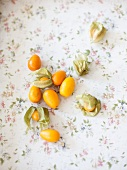 Kumquat is an physalis on a floral patterned tablecloth