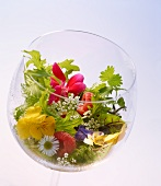 A wild herb salad with edible flowers and raspberries