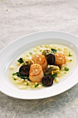 Scallops in a parsley root broth with black nuts