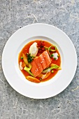 Salmon trout in an asparagus and tomato broth with butter dumplings