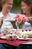 Raspberry Swiss roll and raspberry cream a garden table