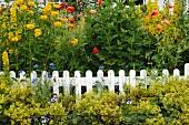 Blühende Blumen am Gartenzaun