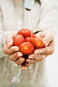 Woman rinsing handful of tomatoes under faucet, cropped view of hands