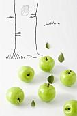 Grüne Äpfel vor einem gezeichneten Baumstamm
