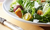 Romaine Lettuce Salad with Tomatoes, Croutons and Cheese