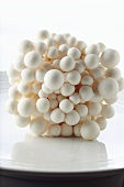 Fresh Bunch of White Beech Mushrooms; White Background