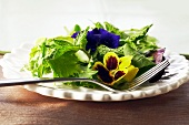 Mixed Green Salad with Edible Flowers on s White Plate