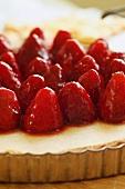 Strawberry Tart; Close Up