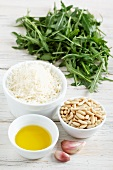 Ingredients for rocket pesto