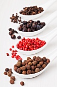 Allspice berries, pink pepper, juniper berries, black peppercorns on sppons