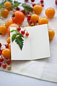 Yellow tomatoes and currant tomatoes (lycopersicon pimpinellifolium) and a notebook