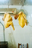 Raw skinned chickens hanging from hooks