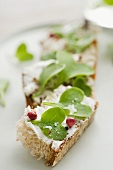 Toast topped with goat's cheese and radishes