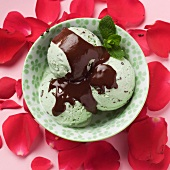 Mint chocolate chip ice cream in a bowl surrounded by rose petals