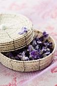 A basket of sugared violets