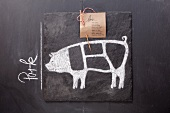 A sketch of a pig and an English label on a chalkboard