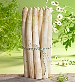 An arrangement of white asparagus, chervil and chamomile