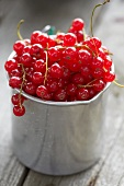 Redcurrants in a zinc cup