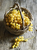 Whitecurrants in a basket