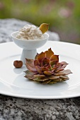 Houseleek with hazelnut cream